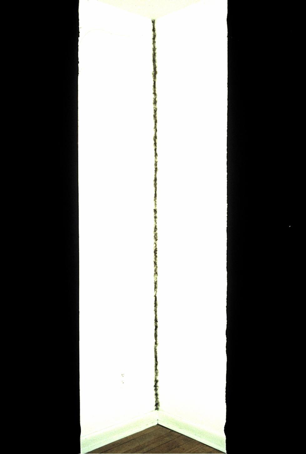 Slide (161)